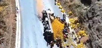 Caminhão com laranjas tomba na BR-365 e carga é saqueada; veja vídeo