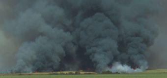 Incêndios crescem 12% às margens de rodovias na região de Ribeirão, aponta concessionária